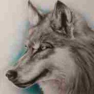 Micha der Wolf