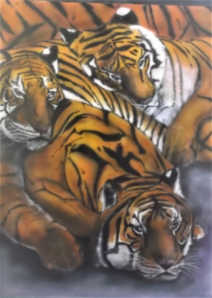 40 x 30 inches Tigers on hardboard